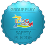 GroupPlayBadge